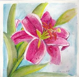Stargazer lily in Watercolor