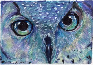 Stardust owl