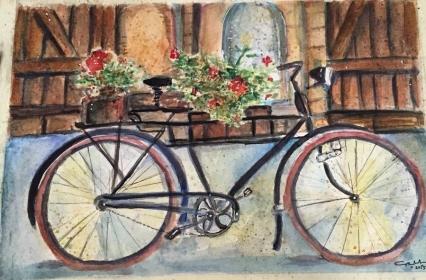20150819054011-2281117-shopfront-bicycle (1)
