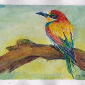 colorful bird, inktense watercolor pencil 2016