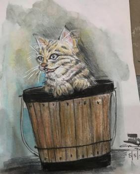 Kitty in a Bucket, 2018, colored pencils